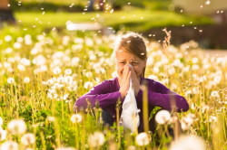 Аллергия - частая причина ларингита