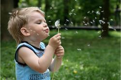 Развитие аллергического ларинготрахеита у детей
