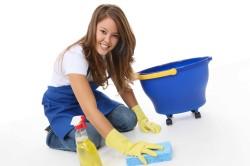 Проведение влажной уборки во избежание контакта с агрессором при аллергии